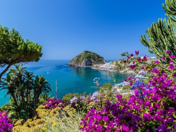 http://www.dreamstime.com/stock-photo-ischia-bougainvillea-glabra-view-sant-angelo-island-italy-tyrrhenian-sea-bougaiunvillea-rocks-water-umbrella-sand-image45251280